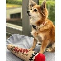 RAW Squeaky Hemp Dog Toy